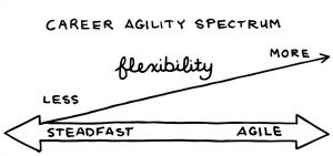 career-agility-spectrum-agile-and-steadfast