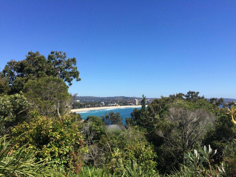 australia-shire-environment