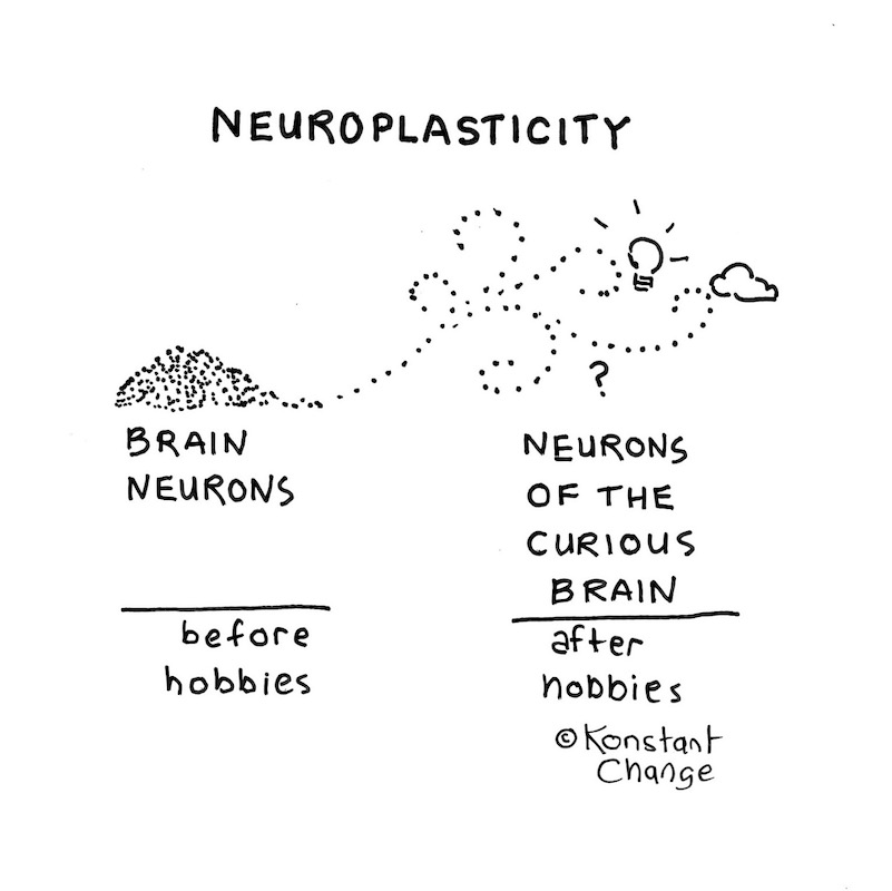 your-brain-and-hobbies-neurons
